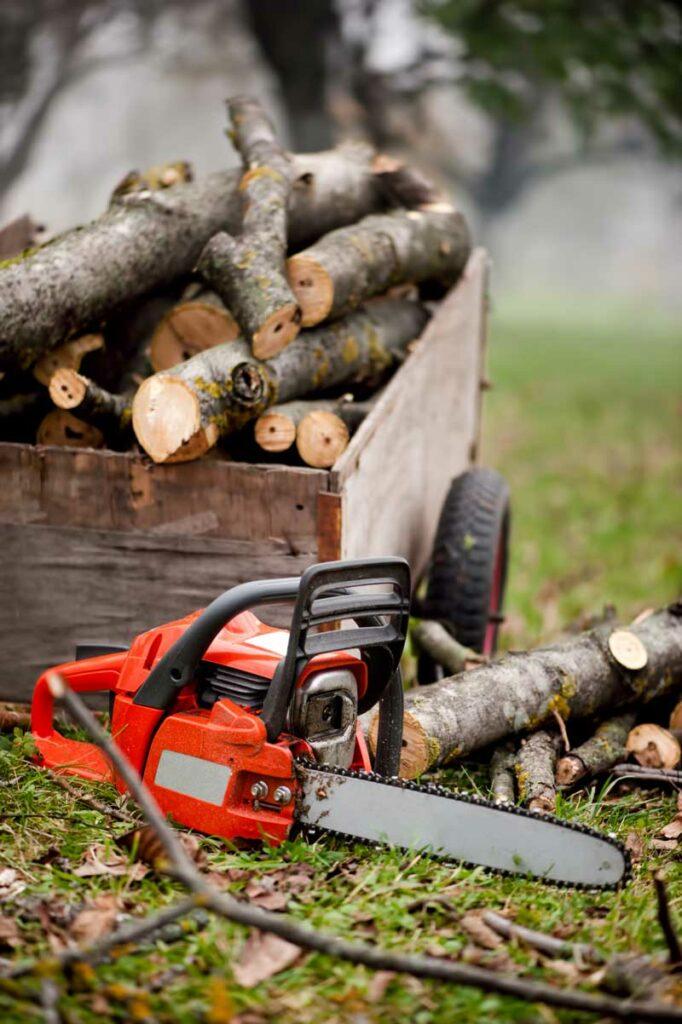 Forstschutzbekleidung